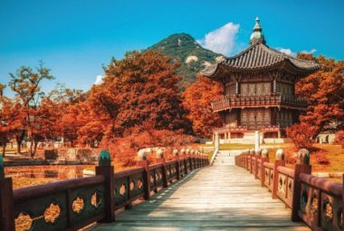 Tổng hợp những điểm ăn chơi mệt nghỉ ở Hàn Quốc